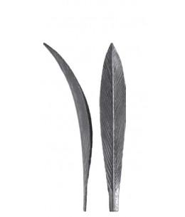 Liść tulipan (50.190)